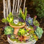 Amazing DIY Mini Fairy Garden for Miniature Landscaping 35